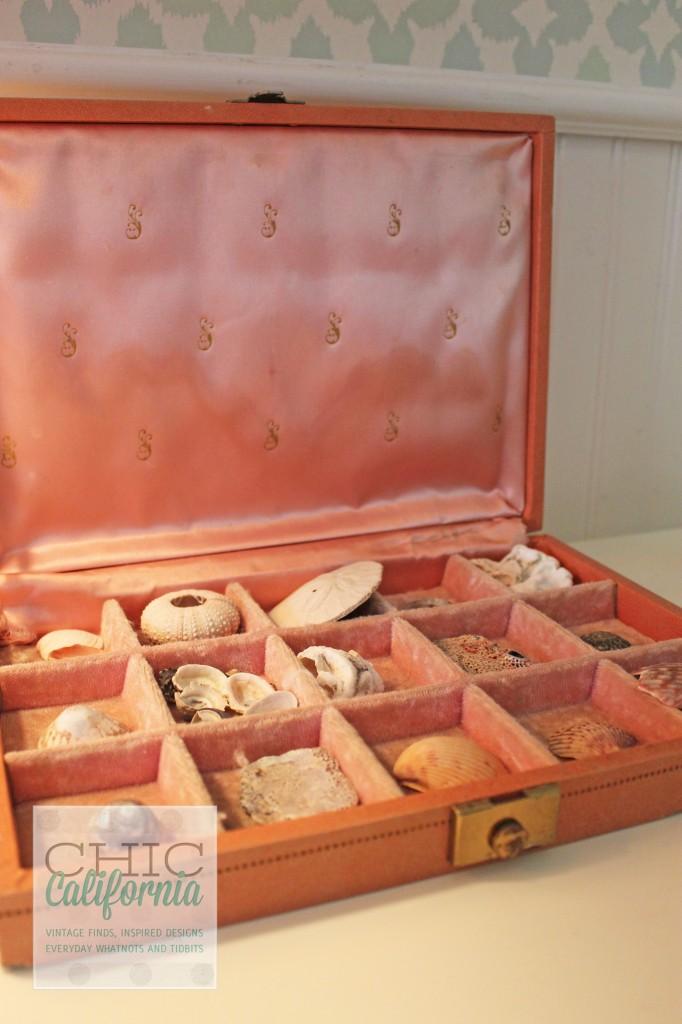 sea shells, pink case, vintage pink case