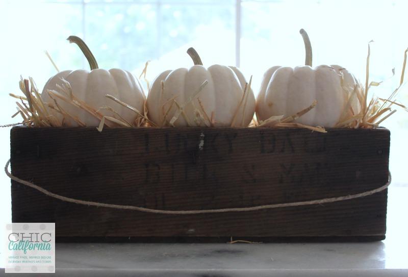 Fall Home Tour 3 pumpkin center piece