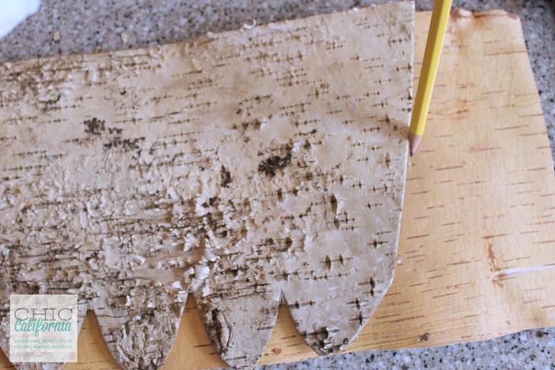 tracing bark