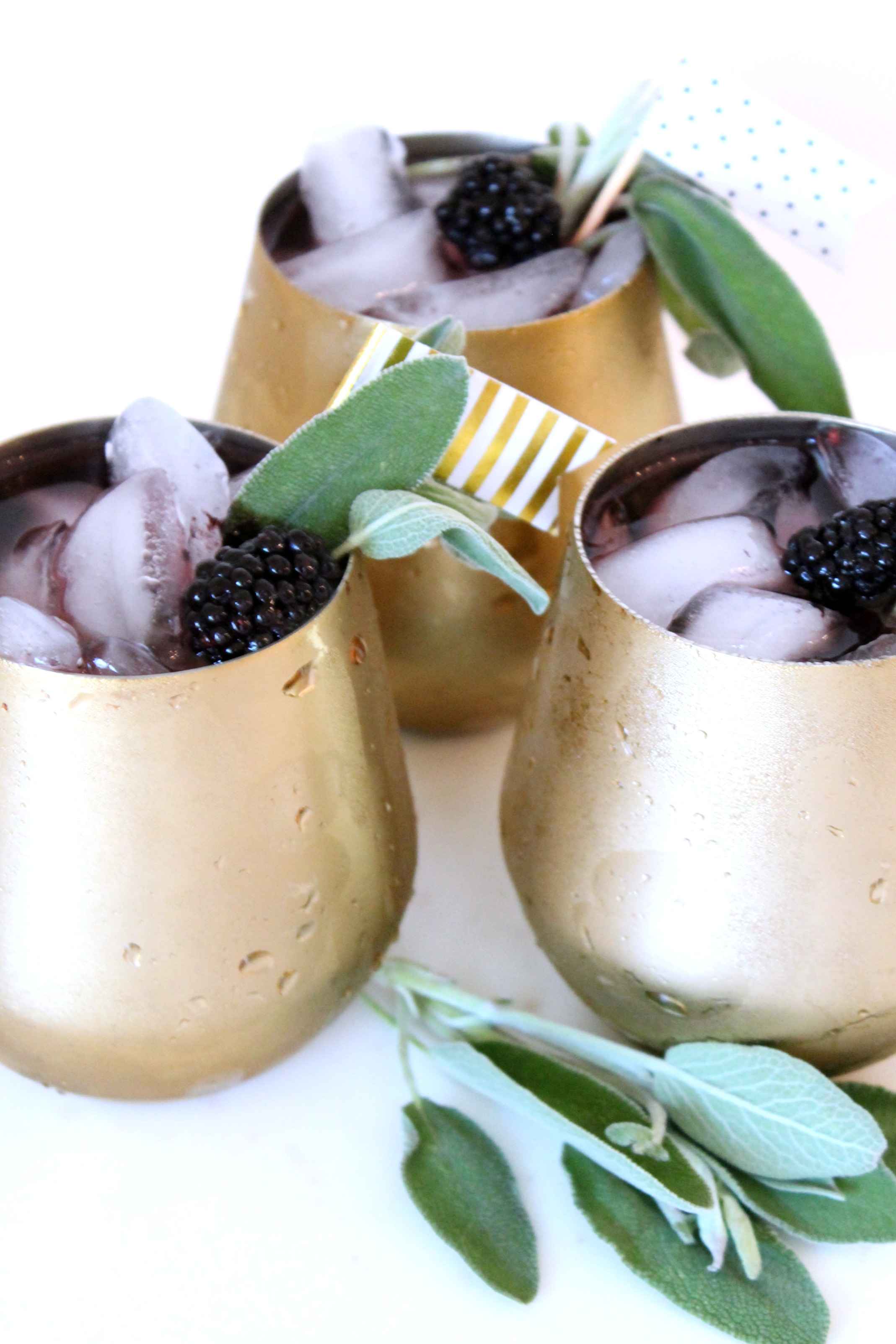 Blackberry Sage Low Carb Cocktail