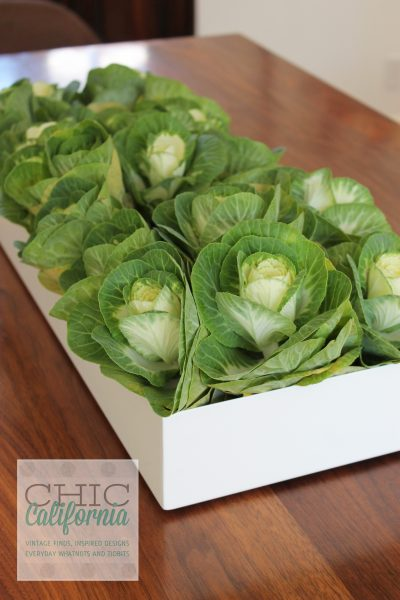 cabbage, centerpiece,
