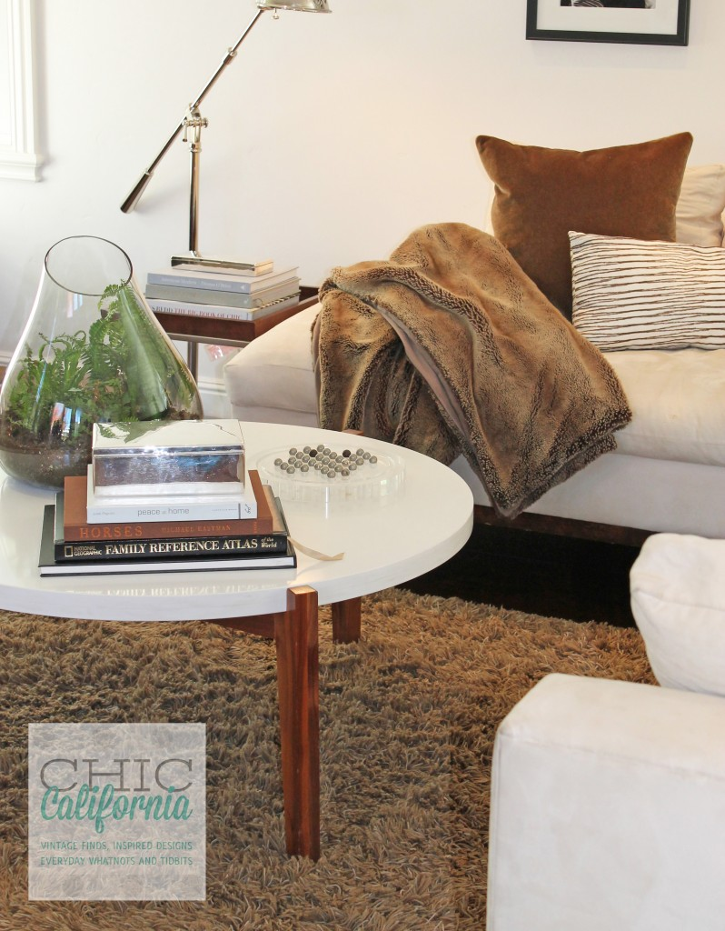 white coffee table, white couch. cozy modern family room, family room
