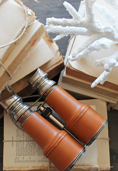 Vintage Binoculars and Vintage Books