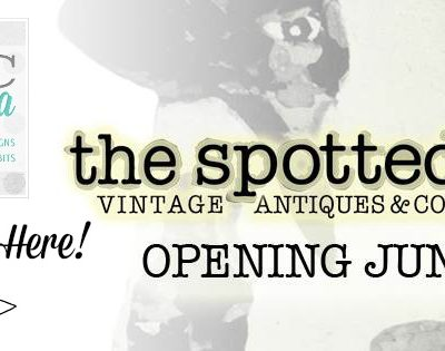 The Chic California Boutique in The Spotted Cow