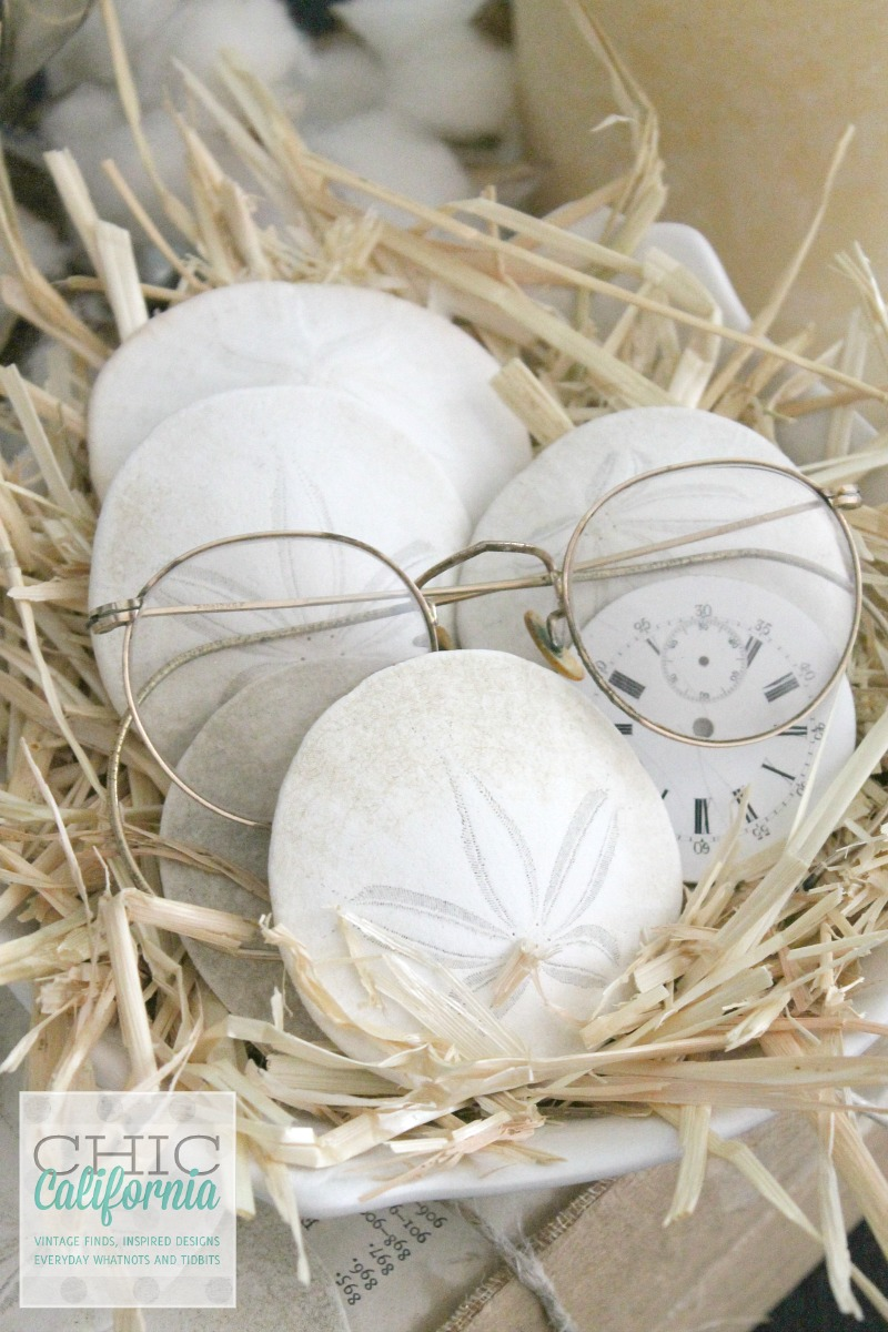 Fall Home Tour Sand Dollars and Spectacles by Chic California